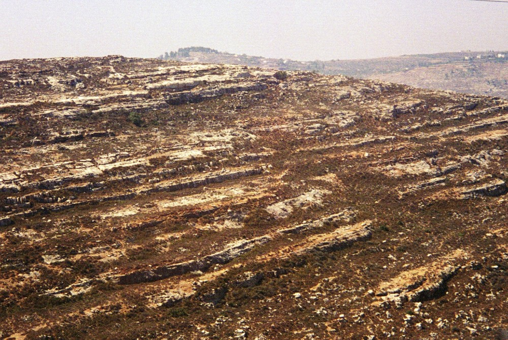 Rocky ground in the Judaean hills