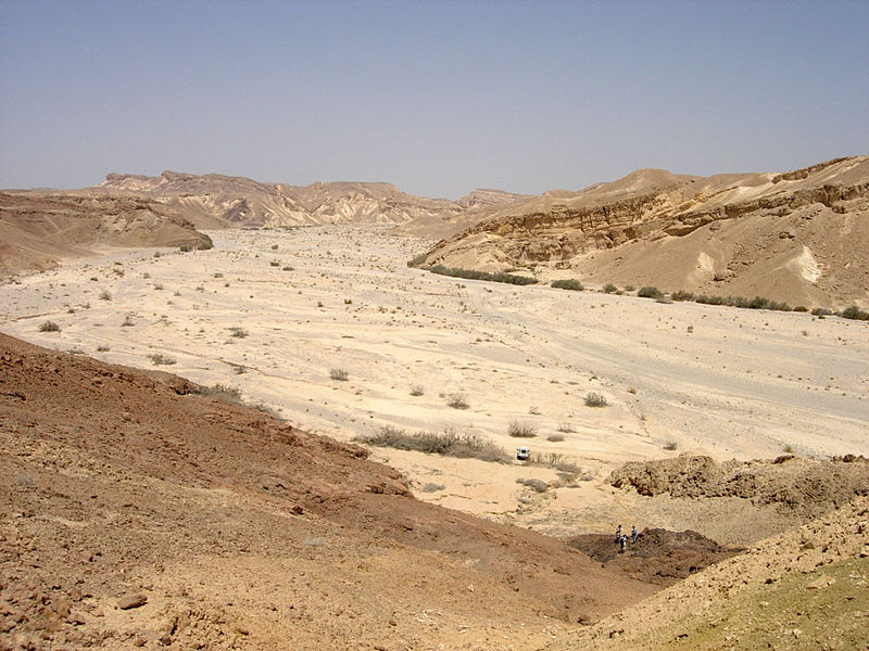 Wadi at Nachal Paran in the Negev desert of Israel (Mark A. Wilson)