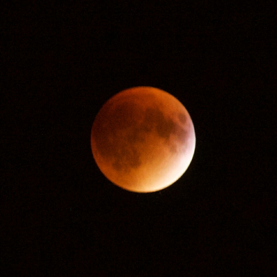 Lunar eclipse Blood Red Moon at Montreal on 27th September 2015 (Yang Cao)