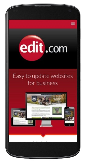 Image of edit.com on mobile phone
