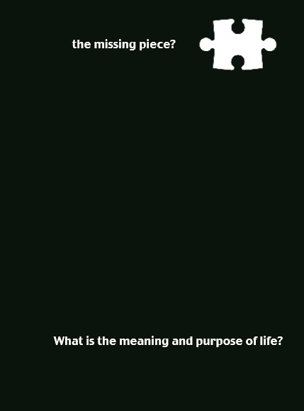 What is the meaning and purpose of life? - 10p