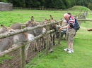 John feeding the donkeys!