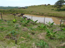 Polluted water source