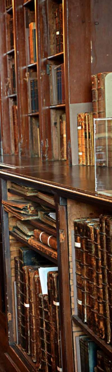 Cathedral Library Shelves