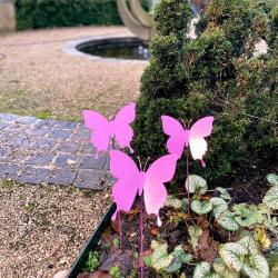 Open Longfield Community Hospice Care Butterfly Display