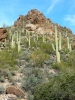 Click here to view the 'US-Arizona - Tucson' album