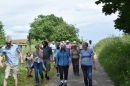 Click here to view the 'Woodton Church Walk 11.06.2017' album