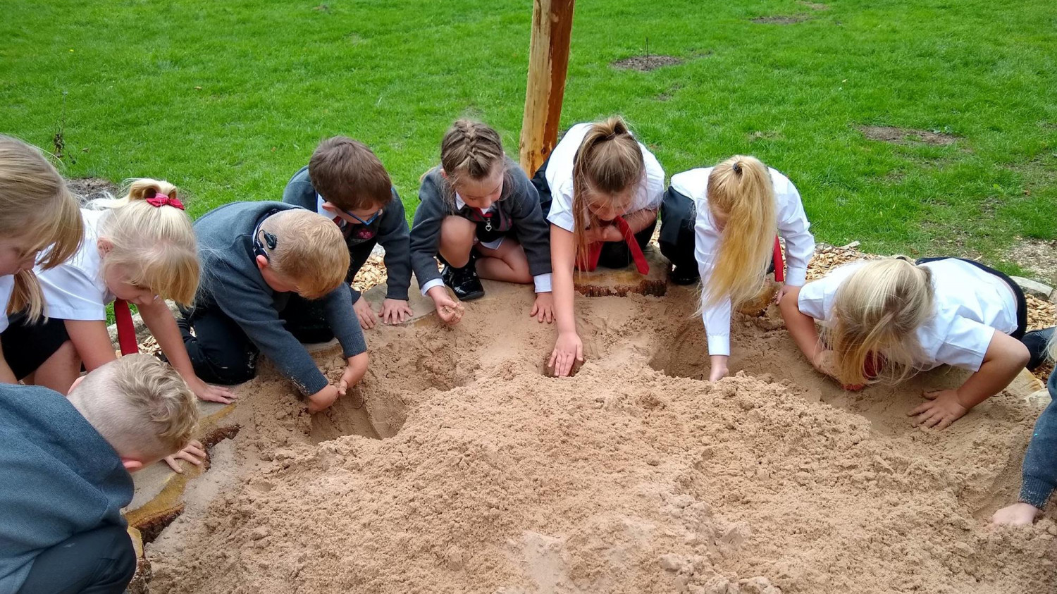 Image of a group of children playing in a sand box
