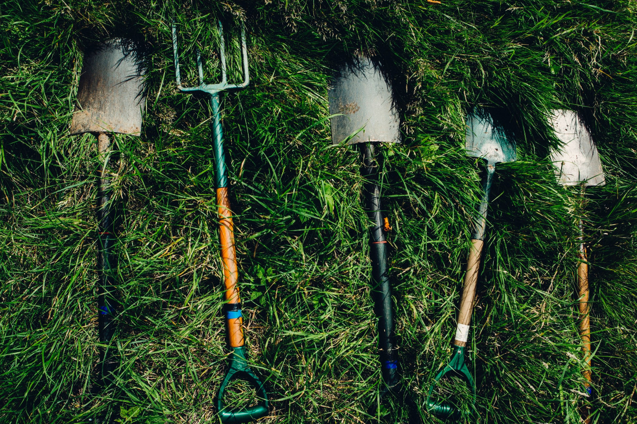Image of garden tools laid out on grass